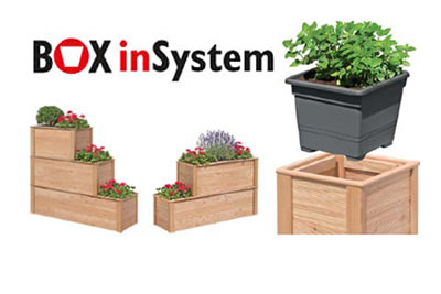 Box in System